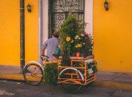 Blog over Cadeau-ideeën voor fietsen