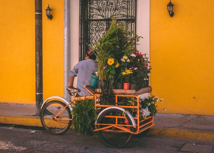 Cadeau-ideeën voor fietsen
